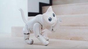MarsCat la gata robótica fue mostrada en la Feria de Electrónica de Consumo CES 2020