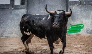 Hombre de Reynosa es hospitalizado tras tomar pastillita estimulante; era para toros
