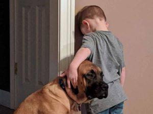 Perro acompaña a niño durante su castigo por pelear