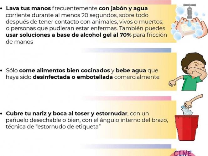 Ante la llegada del Coronavirus (covid-19) a México hay que tener en cuenta las medidas de seguridad y de higiene para evitar propagación y contagio.