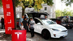 piloto automático de Tesla los salva de ser aplastados por un árbol