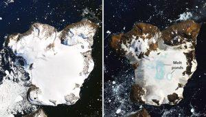 Calor derrite el 20% de nieve de la Antártida