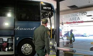 Greyhound no permitirá redadas migratorias en autobuses