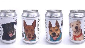 Encuentra a perrita perdida gracias a campaña de cerveza
