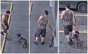 Alertan por robo de perros y gatos