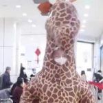 VIDEO: No encuentra cubrebocas para protegerse del coronavirus; usa botarga de jirafa