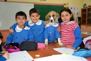 Perrito rescatado ahora es el alumno más aplicado de la escuela