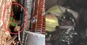 Mujer bombero amamanta a bebé abandonada entre paredes