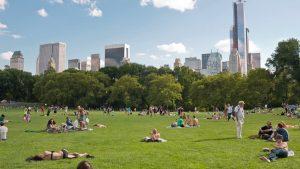 Nueva York usaría parques urbanos para enterrar muertos por covid-19