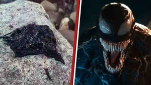 'Venom' de la vida real: captan extraña criatura en VIDEO