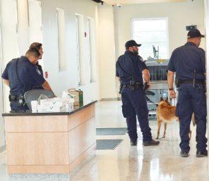 Arrestan a agente por falso reporte