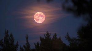 Superluna rosa de abril; te decimos dónde y a qué horas podrás verla