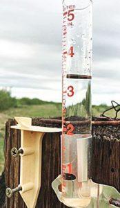Lluvias, 'bendición' para campo: Angadi