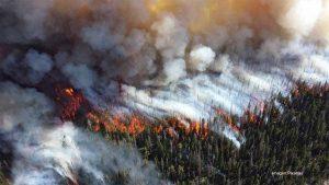 Expertos advierten sobre posibles 'incendios zombies' bajo el hielo del Ártico
