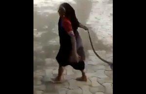 Viral: Una anciana arrastra una Cobra viva sujetándola por la cola
