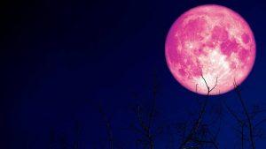 Dónde y cuándo ver la luna de fresa
