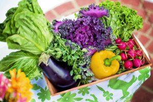 La Nueva Mesa: en qué consiste el programa de salud nutricional del gobierno