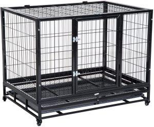 Rescatan a bebé que vivía en una jaula y rodeado de 600 animales