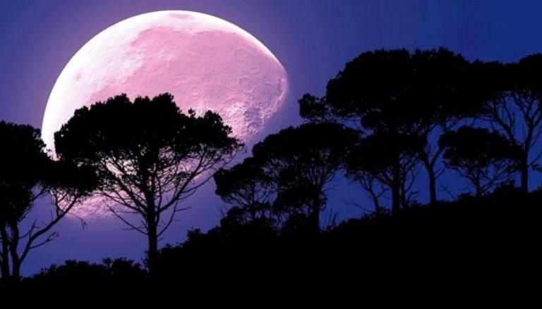 Las mejores fotos y videos de la Luna de Fresa