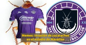 Invasión de cucarachas en estadio de Mazatlán desata MEMES en redes