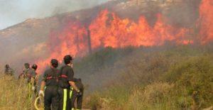 Tamaulipas se alerta sobre incendios forestales por altas temperaturas
