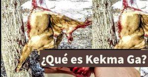 Kekma Ga: ¿por qué es peligroso para las personas con epilepsia?