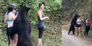 """Joven acechada por oso en Chipinque comparte """"la selfie del año"""""""