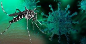 Covid y Dengue: Alertan en Reynosa sobre casos de pacientes con ambos virus