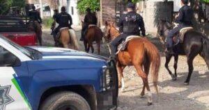 Policías realizan operativos a caballo en Ciudad Victoria