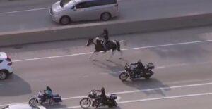 Un cowboy a caballo corta una de las principales autopistas de Chicago