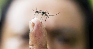 Bajan casos de Covid-19, suben de dengue