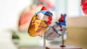 Infección por COVID causaría daños cardiacos a personas con hipertensión