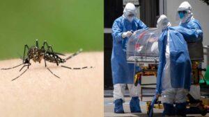 Estudio sugiere que el dengue podría dar inmunidad ante Covid