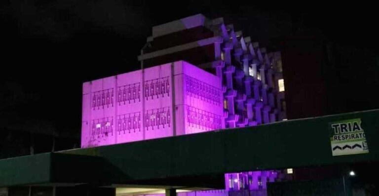 imss ciudad madero rosa cáncer de mama