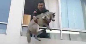 Rescatan a perro de incendio de un departamento