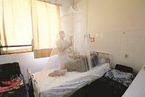 Al alza casos de dengue