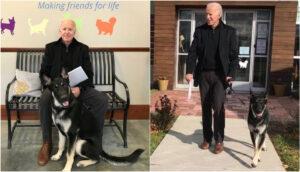 Del refugio a la Casa Blanca, la historia del perro adoptado por los Biden