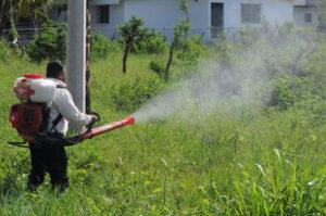 Dengue azota a Tamaulipas; casos siguen a la alza