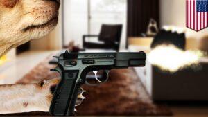 Perro le dispara a su dueño en Texas y le deja herida en la pierna
