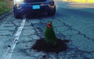 Planta árboles de navidad en baches como protesta (VIDEO)