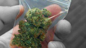 Se podrá llevar marihuana en el bolsillo, pero no más de esta cantidad