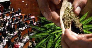 Senado de México aprueba uso recreativo de la marihuana