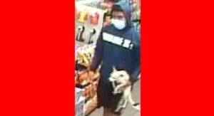 Buscan a par de asaltantes violentos en Laredo, TX: uno es un perrito chihuahua