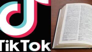 ¿Qué significa la palabra 'zorra'? lo revela en TikTok y se hace viral