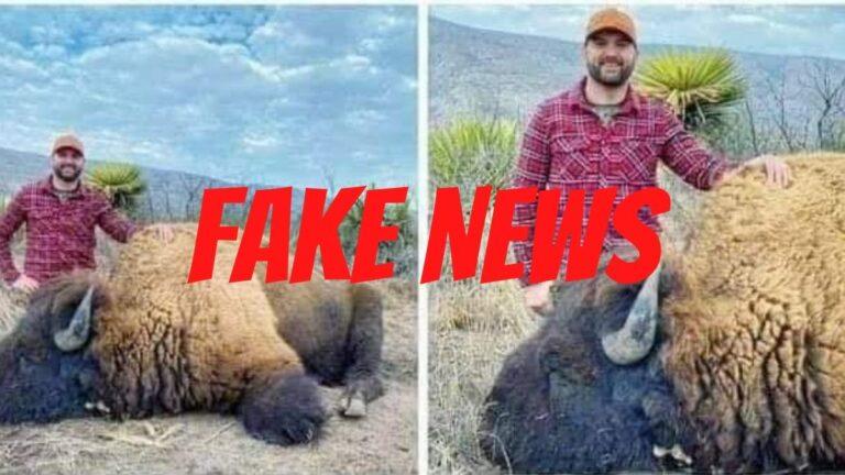 caceria bisonte fake news