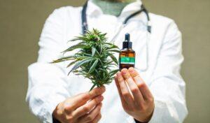 Reglamento para el uso médico de la mariguana publicado en el DOF