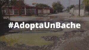 Lanzan #AdoptaUnBache; como apoyo a negocios y denuncia ciudadana