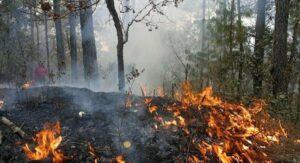 Advierten que 'La Niña' podría traer grandes incendios a México