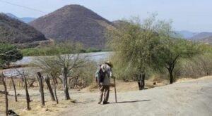 Camina kilómetros en busca de sus hijos que se fueron a EU hace 11 años