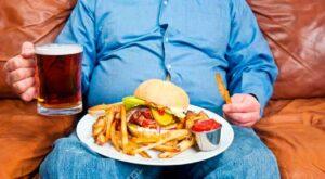 Cuáles son las causas de la obesidad